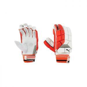 Puma Evo 2 Batting Glove